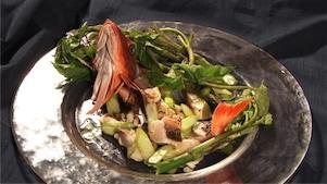 ウドと地魚のサラダ